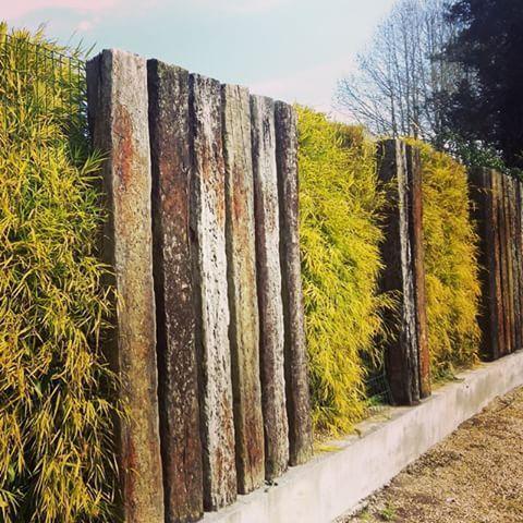 10 Safe Hacks: Backyard Garden Layout Dreams Backyard Garden Design Trees. Backy...