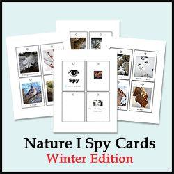free nature printables