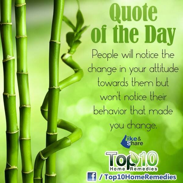 Quotes About People Who Notice: 286 Curated Quotes And More Ideas By Lenitalao