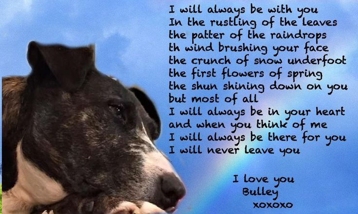 #TheAviators #Angels @BulleyBufton @ada_bscakes Dis is for Bulleys M&D He quickly scribbled it down for dem. xxxxx