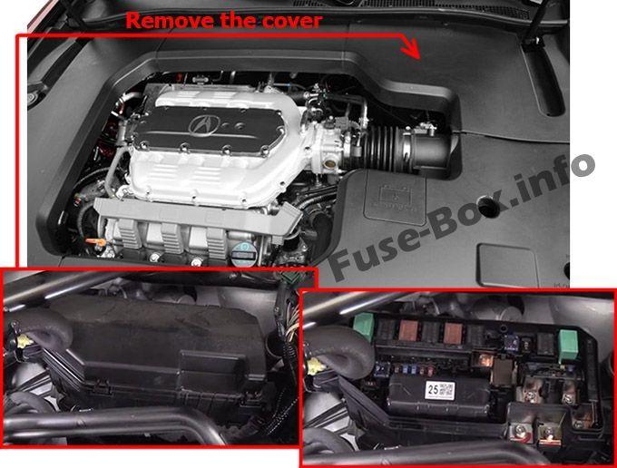 Acura Tl Ua8 Ua9 2009 2010 2011 2012 2013 2014 Fuse Box Location Fuse Box Acura Acura Tl