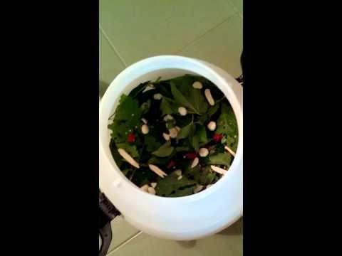 (21) Квашеные соленые огурцы в пластиковой бочке. - YouTube