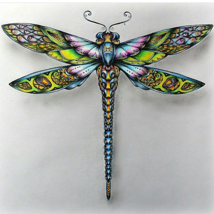 25+ Best Ideas About Dragonfly Tattoo On Pinterest