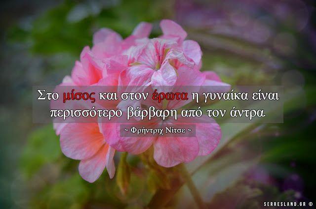Σοφά Λόγια - Μίσος και έρωτας