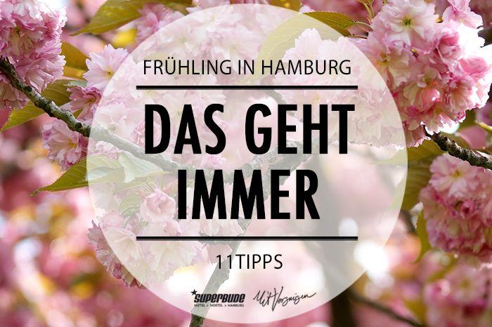 Hier kommen unsere 11 Tipps für euren Frühling in Hamburg!