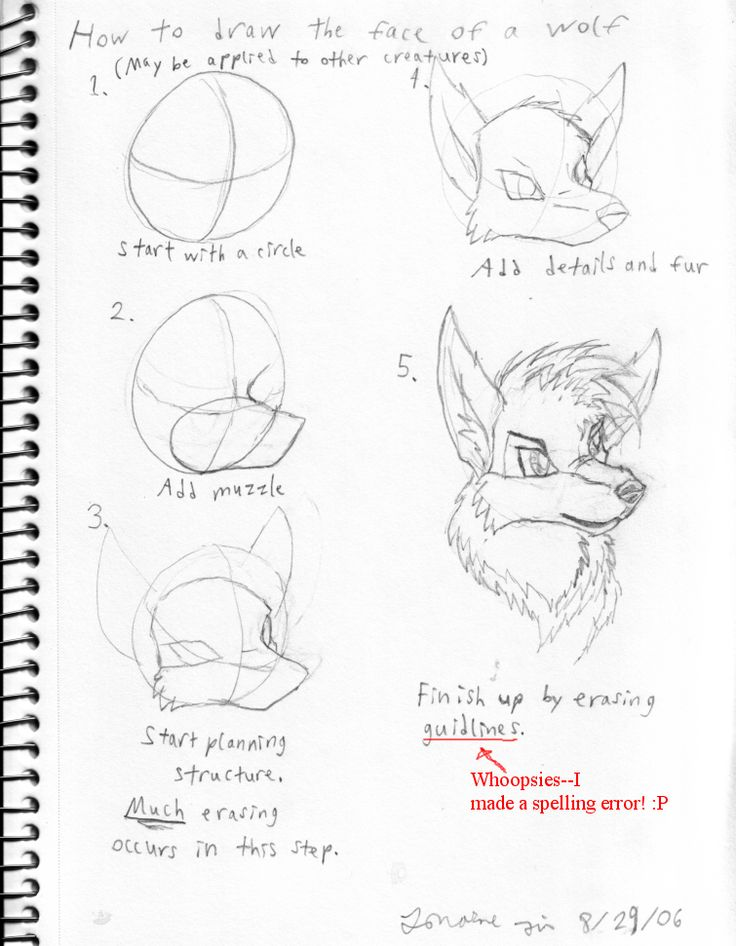 129 best how to draw tutorials images on pinterest drawing how to draw wolves google search ccuart Choice Image