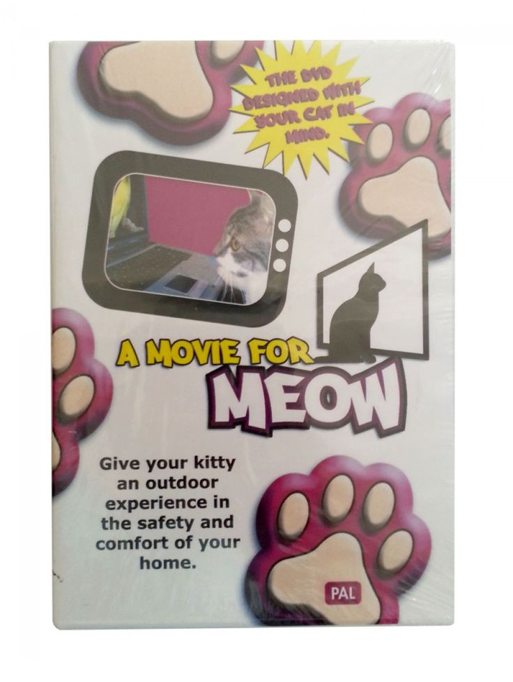 A Movie for Meow