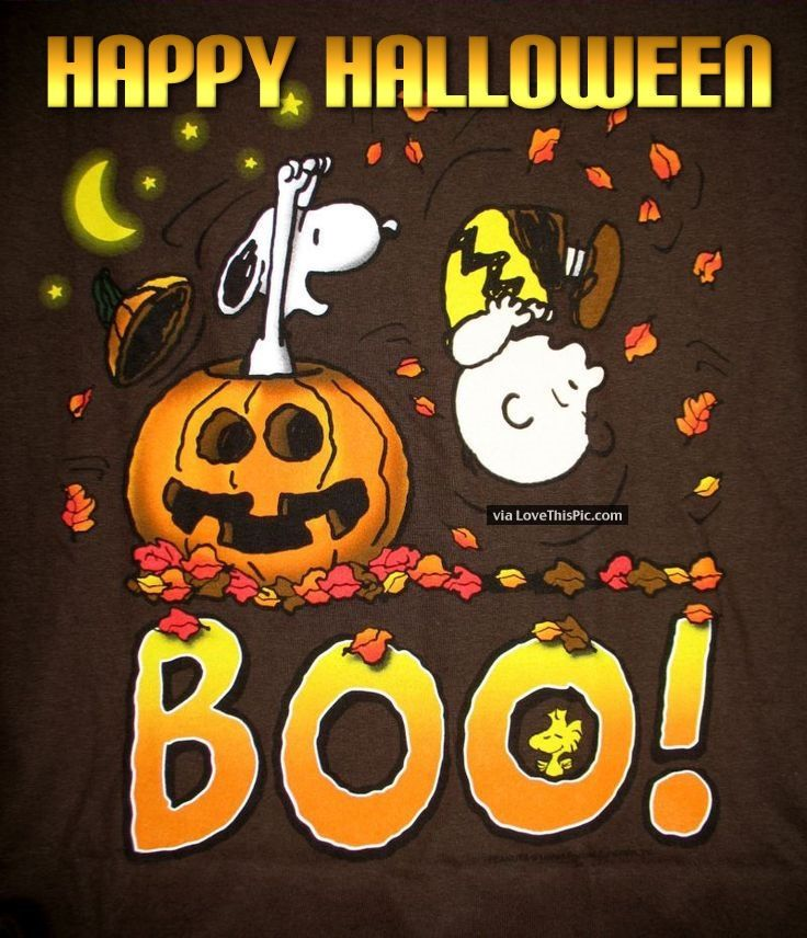 Snoopy Happy Halloween Quote snoopy halloween happy halloween halloween quotes halloween quote happy halloween quotes:
