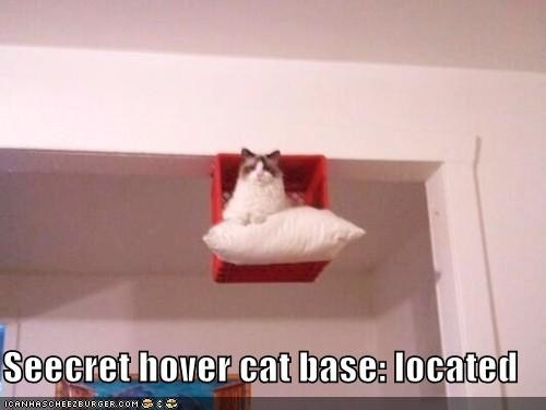 Seecret hover cat base: located