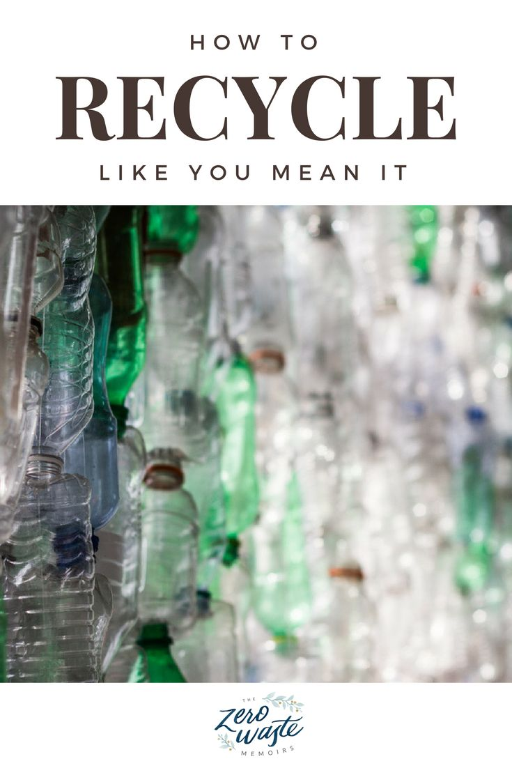 If you live in a city of any real size you should have recycling, at least at a base level. Look up your solid waste authority and get to know their rules!