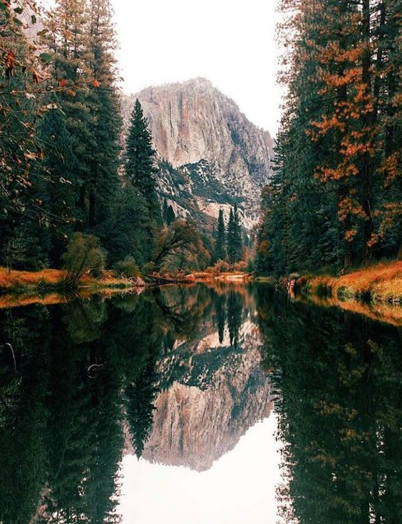 At the Yosemite National Park in the United States.