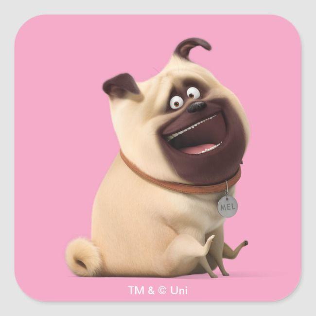 Secret Life Of Pets Mel Square Sticker Zazzle Com Secret Life Of Pets Wonder Pets Pet Calming