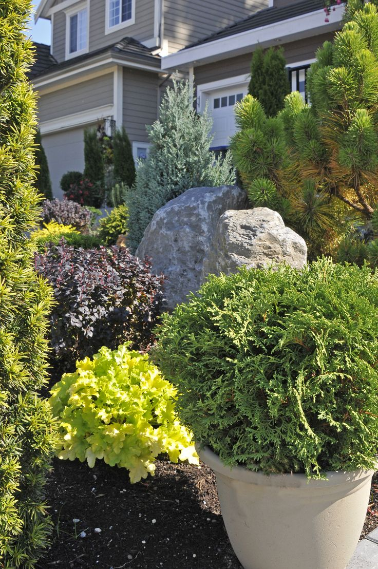 To create this alpine garden they used many different kinds of bushes, trees, and rocks.