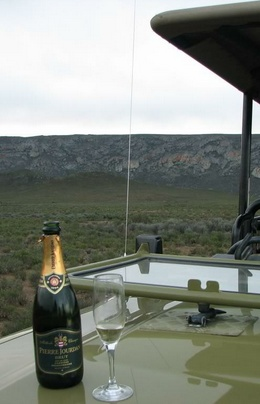 Champagne in the Kruger Park - South Africa