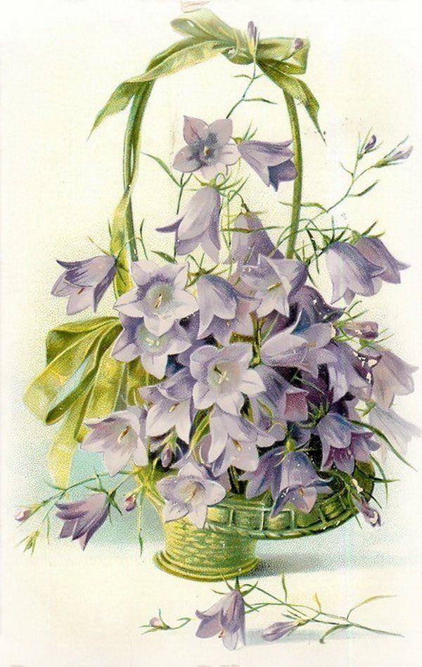Котами картинки, открытки колокольчики цветы