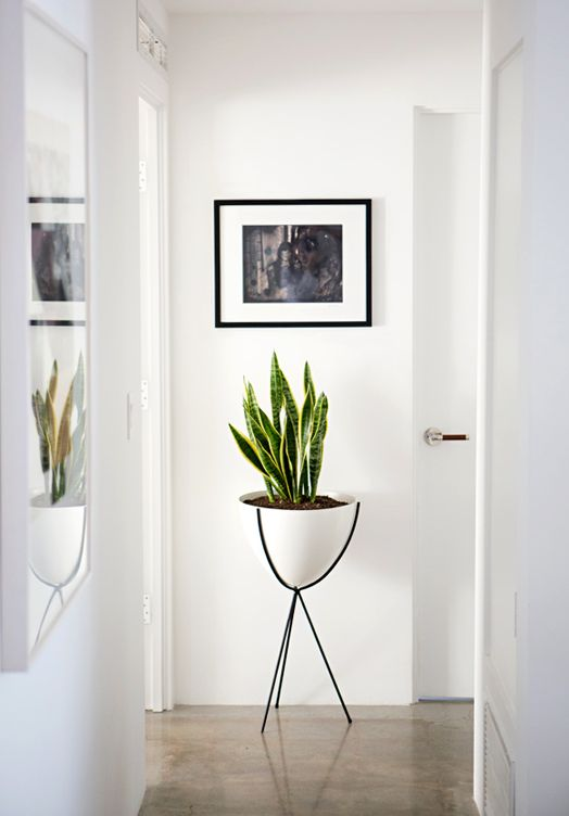 1000 images about hallways entrances etc on pinterest for End of hallway ideas