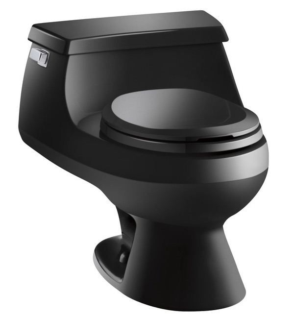 white toilet with black seat. Rialto One Piece Round Front GPF Toilet with Rim Jet Flush Technology  Left Hand Trip Lever and French Curve Seat Best 25 Black toilet seats ideas on Pinterest home