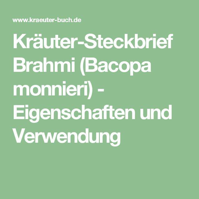 Kräuter-Steckbrief Brahmi (Bacopa monnieri) - Eigenschaften und Verwendung