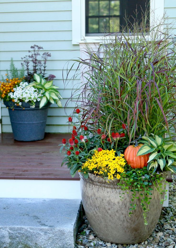 Full Garden In Backyard: 29 Best Images About Container Gardens For Autumn On