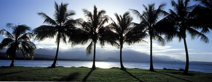 Coastal scenery in Port Douglas. http://www.ozehols.com.au/holiday-accommodation/queensland/cairns-area/port-douglas for Port Douglas holidays in Queensland. #QueenslandHolidays #AustraliaHolidays @OzeHols - Holiday Accommodation