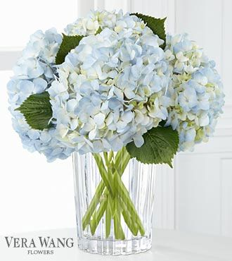My favorite flowers .... Hydrangeas - simple (but striking in certain colors like blue), classic (but not expected), perfect (but not too uniform)