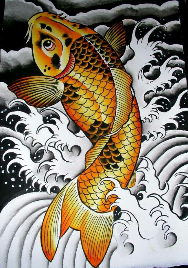 798 best images about carpa ou koi on pinterest koi fish for Carpa koi butterfly