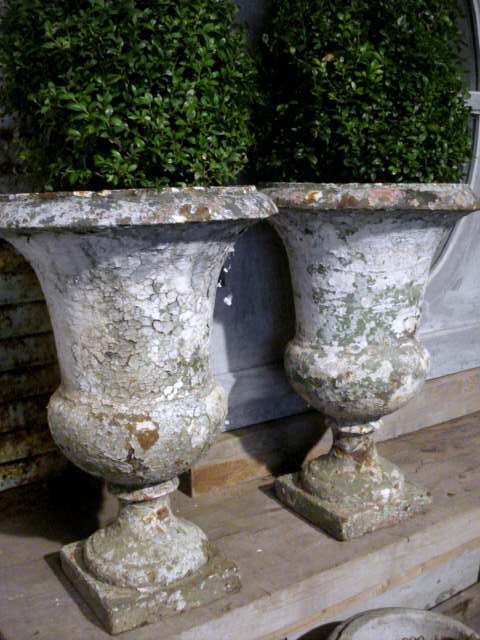 Boxwood in vintage French urns...LOVE