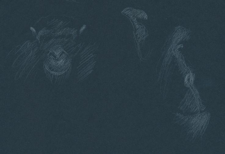 chimps Artis