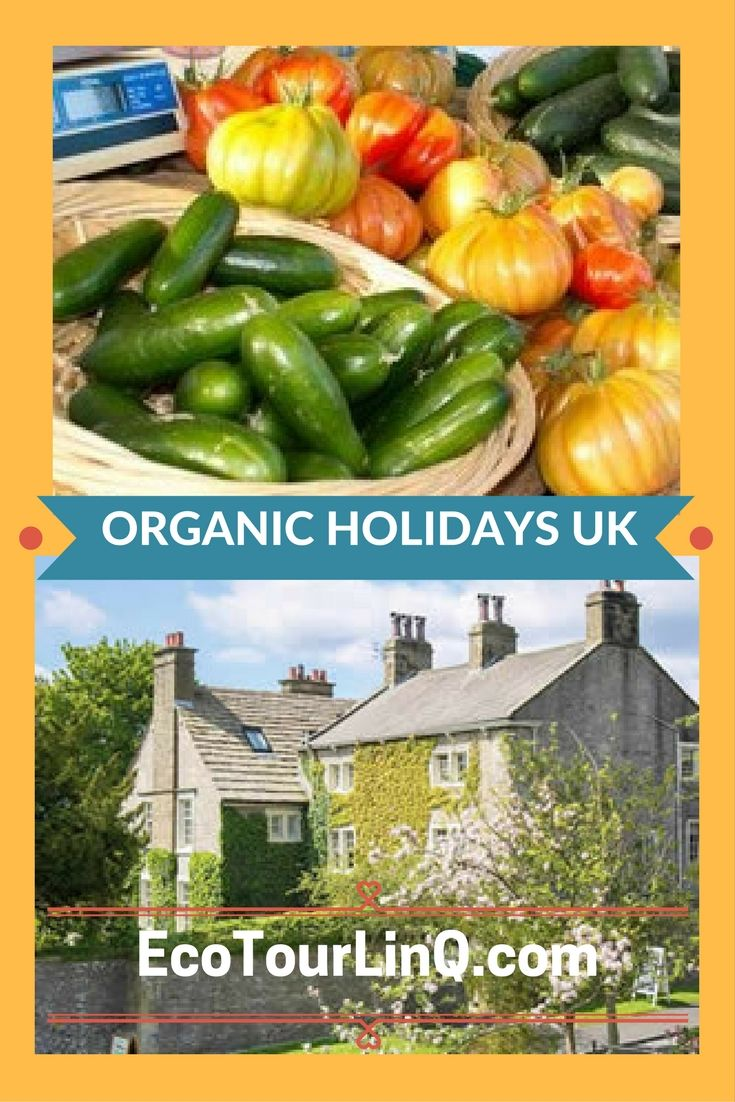 Online directory to help you find organic farm stays, B&B's, and small boutique hotels in the UK