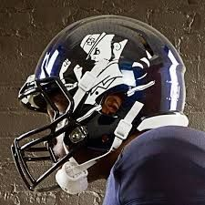 Image result for notre dame football pics