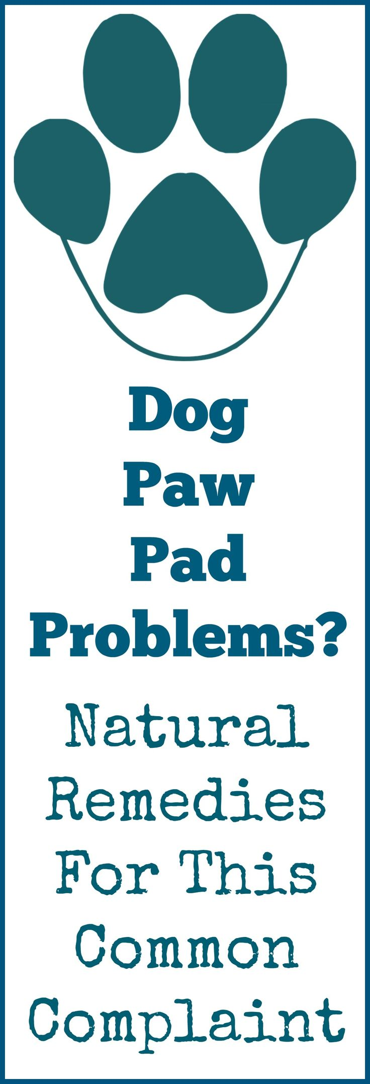 Natural solutions for dog paw pad problems.