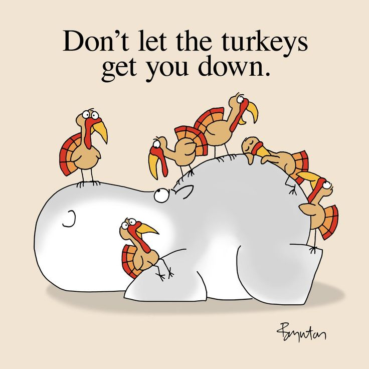 Easy to say, hard to do:  Don't let the turkeys get you down.  - Sandra Boynton