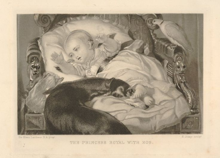 Princess Victoria as a baby, lying against cushions in a large chair and reaching out to left, with a greyhound standing in front, resting its head on the cushions by her feet; a bird is perched on the arm of the chair on the right; after Landseer; with open letters; plate 1  Mixed method mezzotint