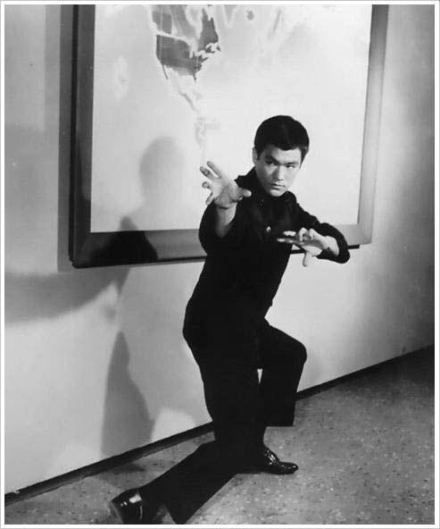 Libro de Bruce Lee + Biografia