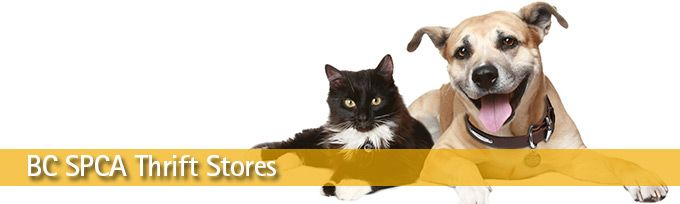 BC SPCA: Thrift Stores