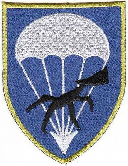 Bundeswehr paratroopers Patch r Airborne Support Battalion 272