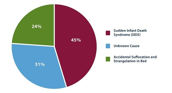 The breakdown of sudden unexpected infant deaths by cause in 2013 is as follows: 45% of cases were categorized as sudden infant death syndrome, followed by unknown cause (31%), and accidental suffocation and strangulation in bed (24%).