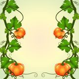 A Pumpkin Vine Decor - Download From Over 64 Million High Quality Stock Photos, Images, Vectors. Sign up for FREE today. Image: 32710551