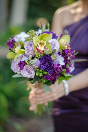 70 best Naples Zoo Weddings images on Pinterest Zoos Naples and