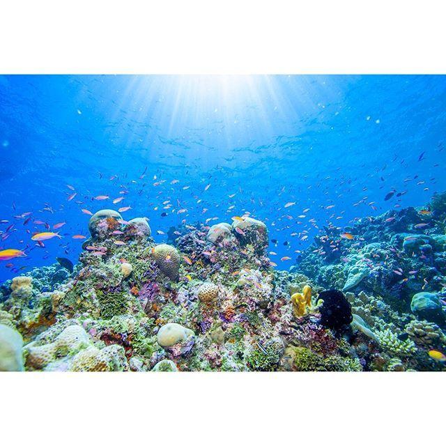 ジープ島 (ミクロネシア)