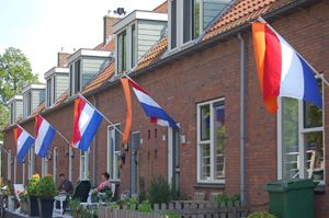 Oranje wimpel: The orange pennant/pennon which the Dutch add to the flag on specific holidays:  http://flagspot.net/flags/nl-fday.html#days