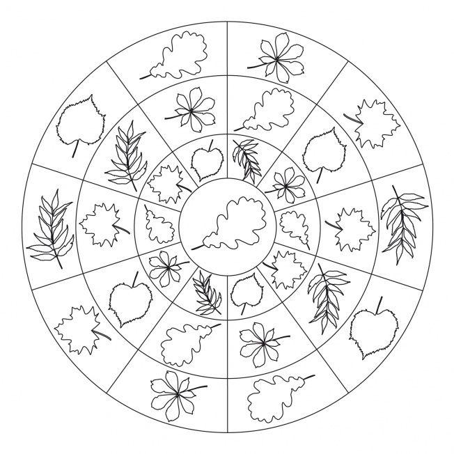* Mandala: Verschillende herfstbladeren!