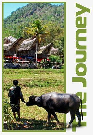 Ke'te' Kesu' Village, Toraja