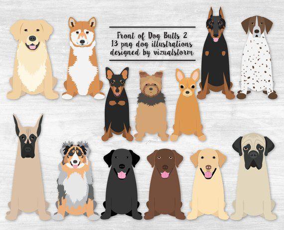 Pin On Animal Illustrations On Etsy Vizualstorm