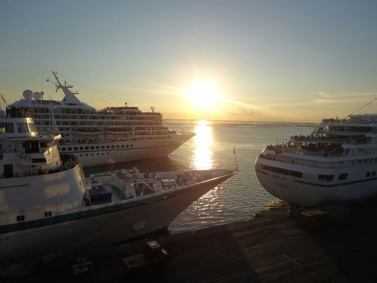 MS Albatros, MS Artania und MS Amadea in Bremerhaven