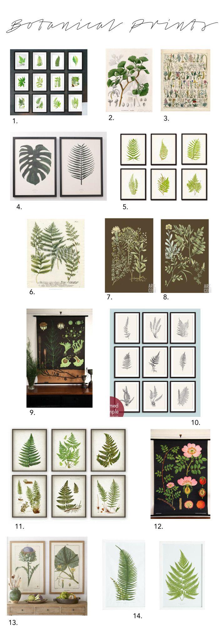 Elements of Style Blog | The Beauty of Botanicals | http://www.elementsofstyleblog.com