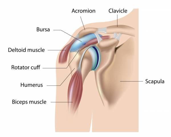 shoulder injury, kettlebells for shoulder, shoulder exercises, scott iardella
