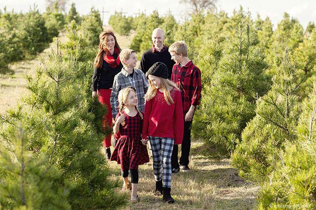 Christmas Tree Farm Family Pictures with Buffalo Plaid - Capturing Joy with Kristen Duke