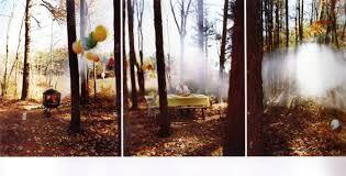 david hilliard photography - Google Search