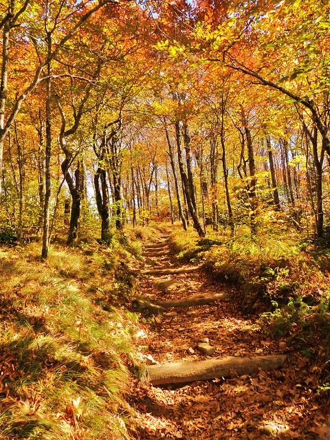 Appalachian Trail - Springer Mountain, Georgia to Mount Katahdin, Maine, United States